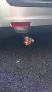 くだらない!車のマフラーにおもちゃの笛を入れてエンジン始動したよ!