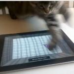 【7秒動画】ネコ VS iPad!iPad上を動くネズミと戦う子猫!勝敗の行方は!?
