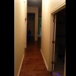 キツネザルが廊下を進んでいく様子が3秒でわかる動画!