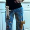 今日キュンときた猫たち!壁にぶつかる子猫など(画像4枚)