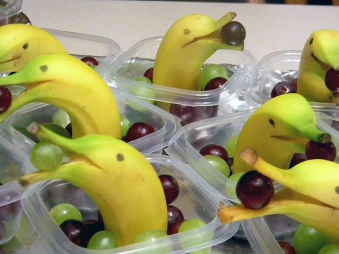 banana-dolphins