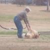 公園から帰りたくない犬