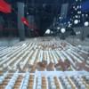 2014個のネズミ捕り器と2015個のピンポン球の連鎖反応!ペプシマックスのお祝い映像!