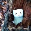 真っ白なオコジョが木の穴から顔を出したり引っ込めたり!ヌイグルミみたいに可愛い冬毛のオコジョ!