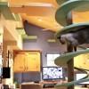 超素敵な猫ハウス!18匹のニャンコのために400万円でリフォームした家!