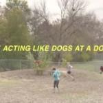 ドッグパークで犬っぽい演技をする人間達!