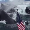 これはすごい!複数のザトウクジラがボートの真横で潮吹き!