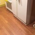 友人と一緒にゴハンを食べたい犬