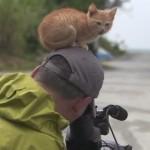 動物写真家、岩合光昭さんの頭に乗る猫!