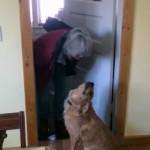 チューを嫌がる犬
