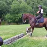 怖いけどジャンプする馬
