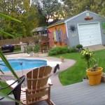 猫をプールに叩き落す猫