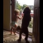 犬と子供、パパの帰宅に大喜び!