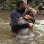川で小熊を抱きしめてキスをする男