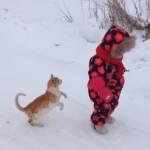 子供に自分の存在を知らせる猫