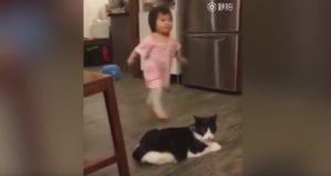 わるいニャンコ!?子供に足をひっかけて転ばせる猫!