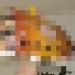 トトロのネコバスの簡単な作り方(画像)